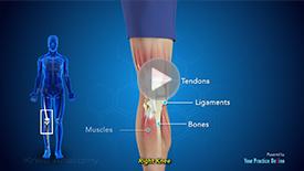 915e38a4fc Knee Surgery New York | Knee Pain Treatment New York | Knee Injury ...